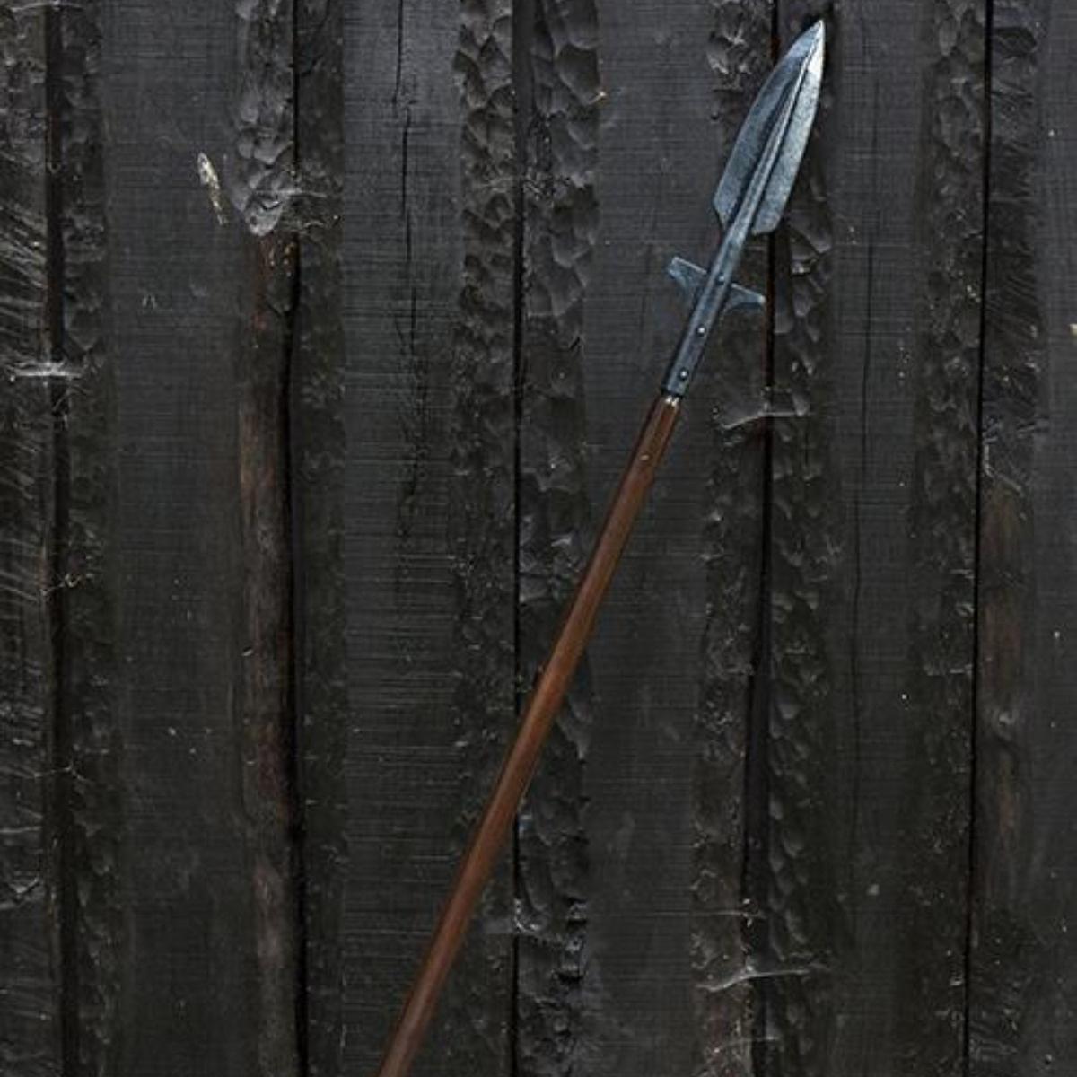 GN lance ailé Viking