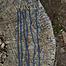 Epic Armoury Tie snørebånd med aigletter, sæt af 6, blå