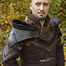Epic Armoury Rogue hals och arm rustning