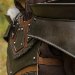 Rogue neck and arm armor