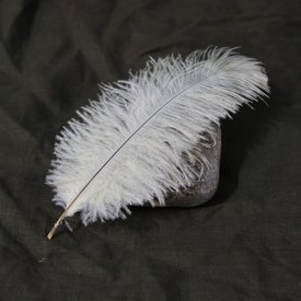 Cream feather, 20-25 cm