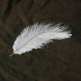 Hvide fjer, 20-25 cm