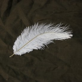 White feather, 20-25 cm