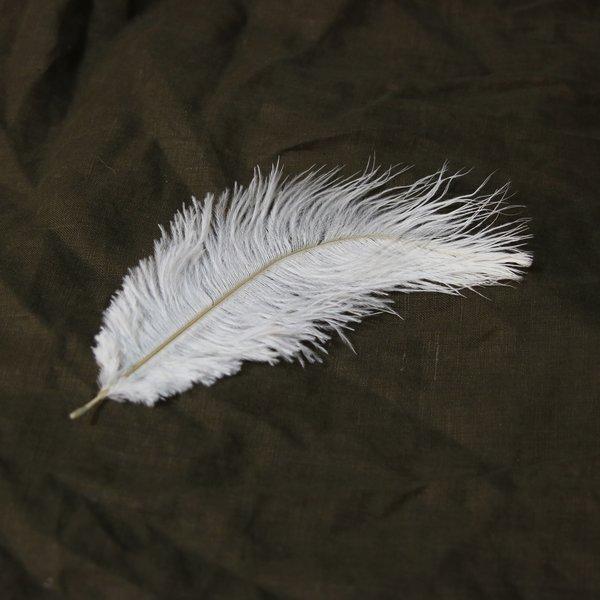 Biały pióro 20-25 cm