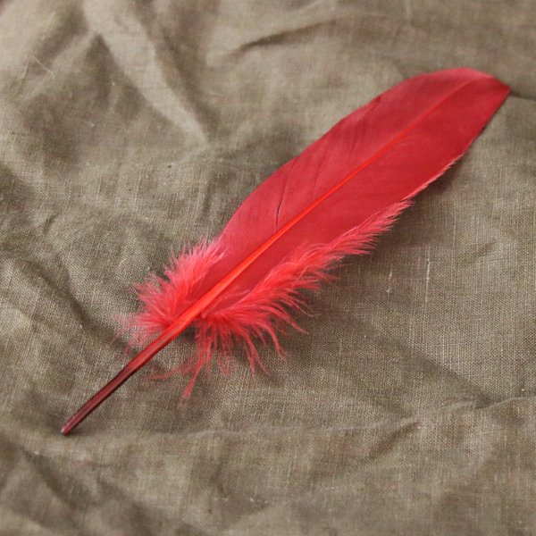 Goose feather red, 15-21 cm
