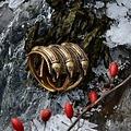 Germaanse IJzertijdring Segerstad, brons