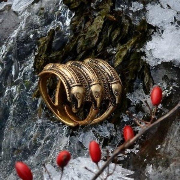 Germanica Età del Ferro anello Segerstad, bronzo