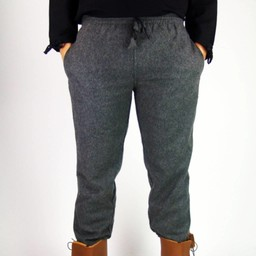 Wełniane spodnie, szary