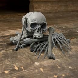 Bolsa con 18 huesos