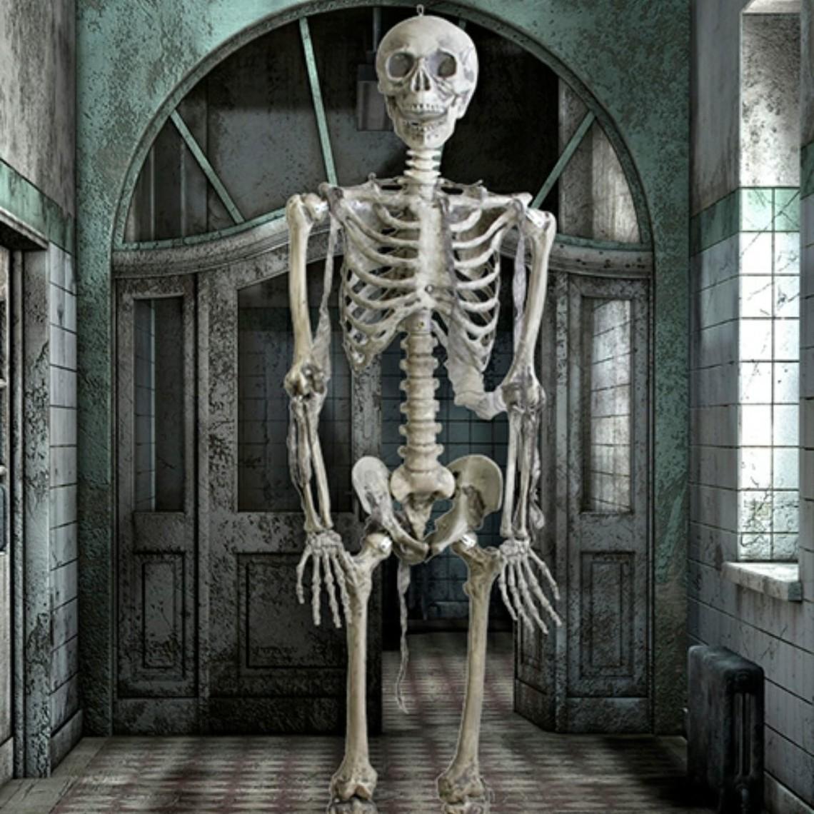 Epic Armoury esqueleto completo