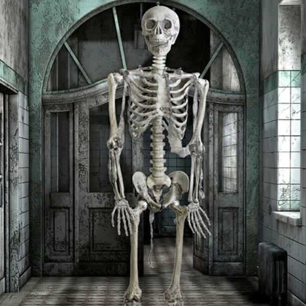 Epic Armoury scheletro completo