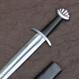 Vikingzwaard Ragnar met schede