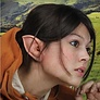 oreilles elfes