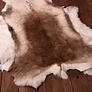 pelli di pecora