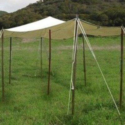 Tarps, tent pegs & rope