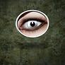farblinsen