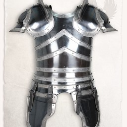 Full armour Edward bronzed