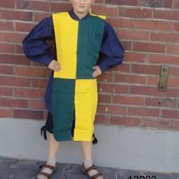 Børns surcoat mi-parti blå-gul