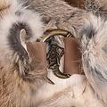 Mytholon Fur collar Sandy
