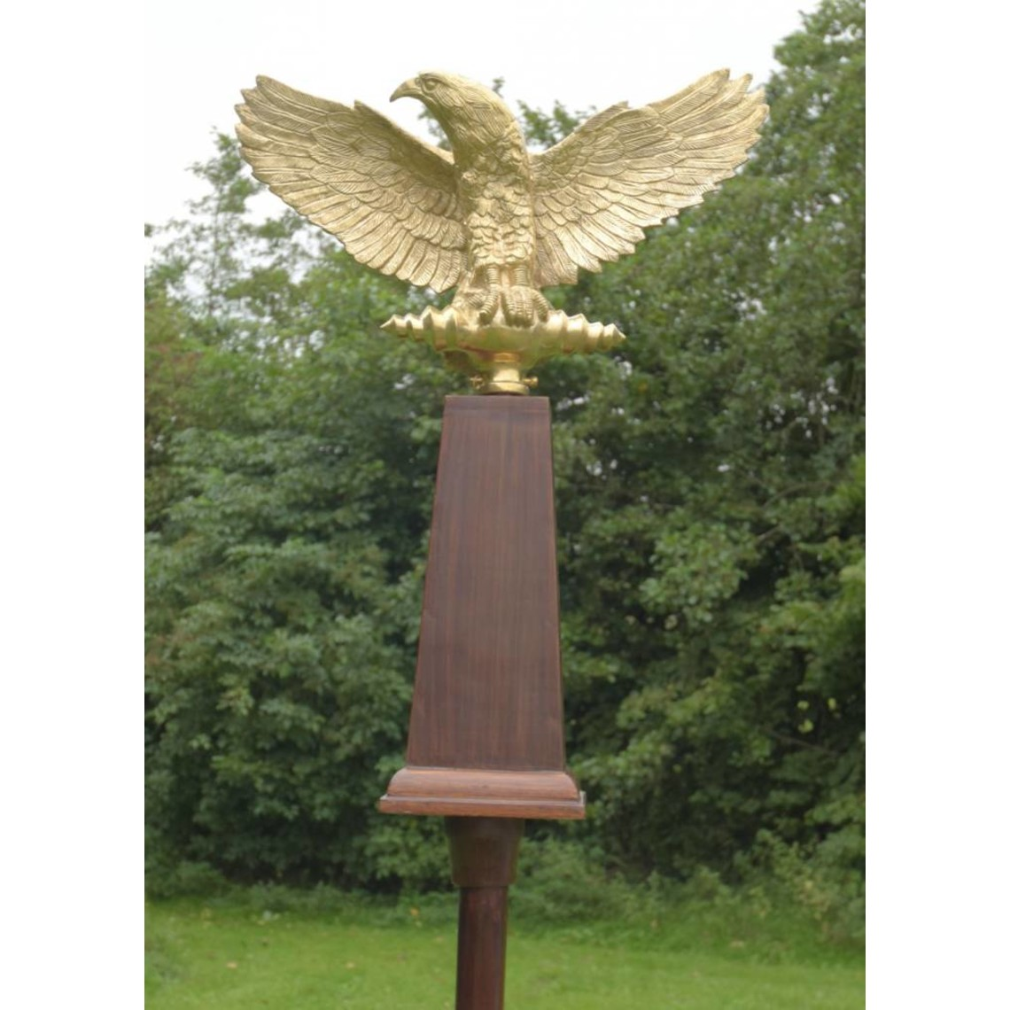 Deepeeka Aquila, römische Adler mit Welle
