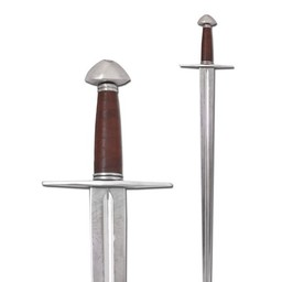 Norman tipo spada Xa (in azione)