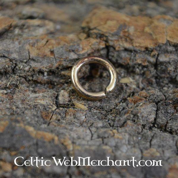 Bronze ring til manifolden