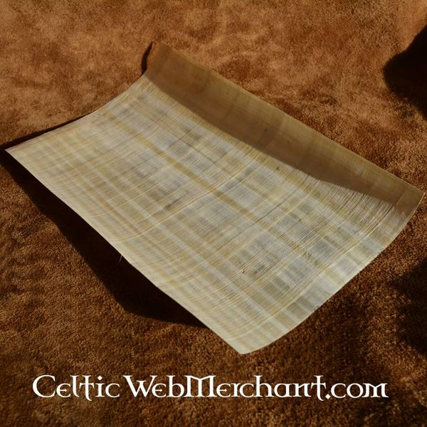 Papyrus sheet 62x42 cm