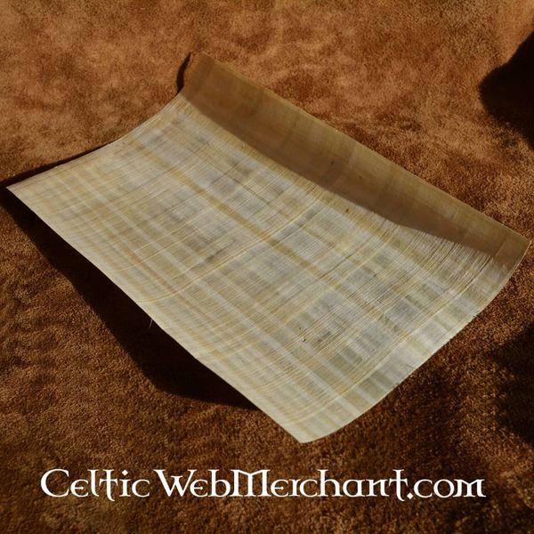 Papyrusbladet 62x42 cm