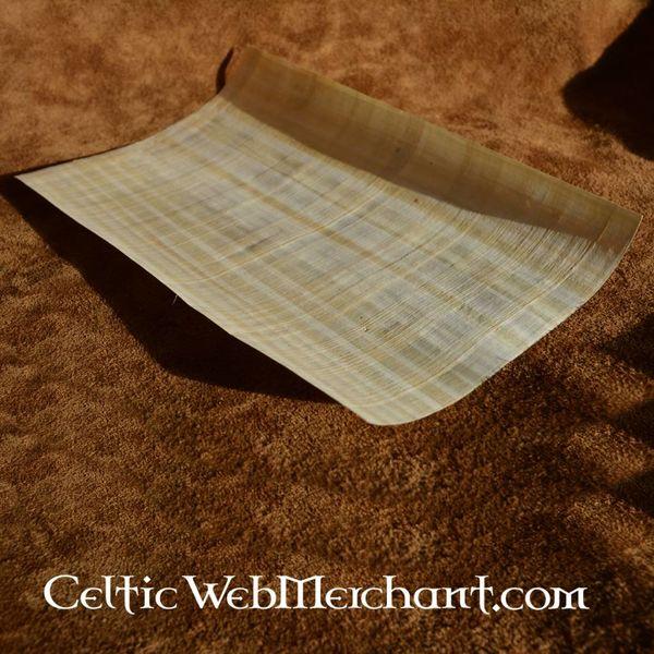 Feuille de papyrus 62x42cm
