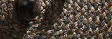 Sisal woven carpet Romeo, 100% sisal fiber