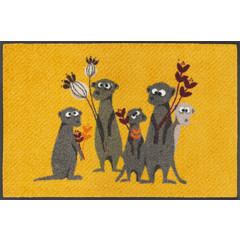 Kleen-Tex wash + dry doormat | Meerkat | 50/75 cm | ... washable mat with rubber edge!