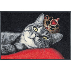 Kleen-Tex wash + dry doormat | Royal Cat | ... washable mat with rubber rim!