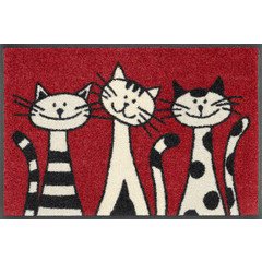 Kleen-Tex wash + dry doormat | Three Cats | ... washable mat with rubber rim!