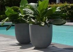 Een fiberstone plantenbak, voor binnen en buiten