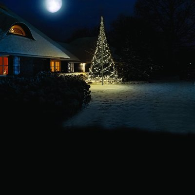 Fairybell Kerstboom 600cm met 1200 ledlampjes (met twinkelende lampjes)