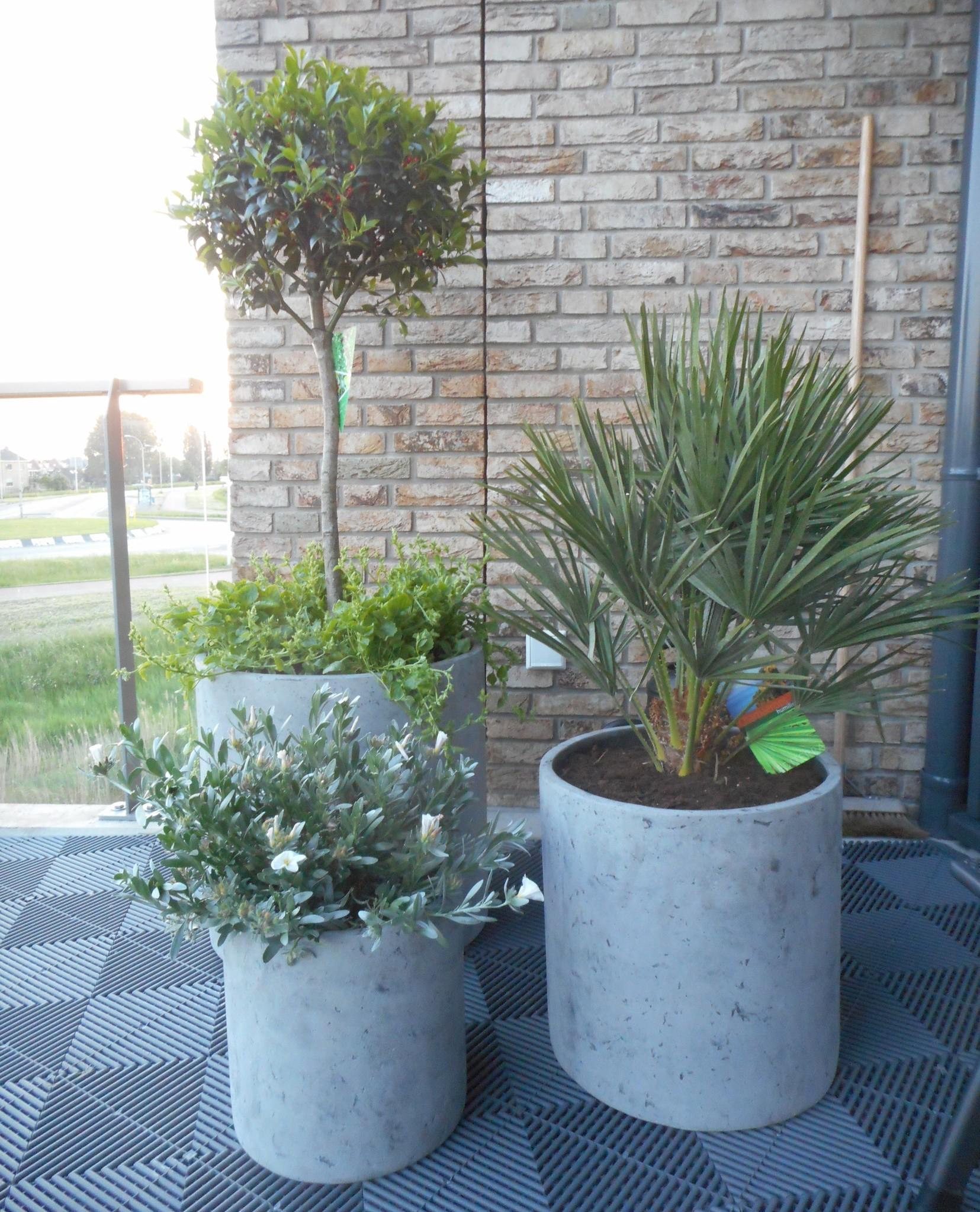 (Deel 3) Plantenbakken & bloempotten; welke, waarom & hoe