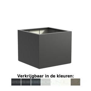 Buxus vierkant - kubus - mat  ...v.a.