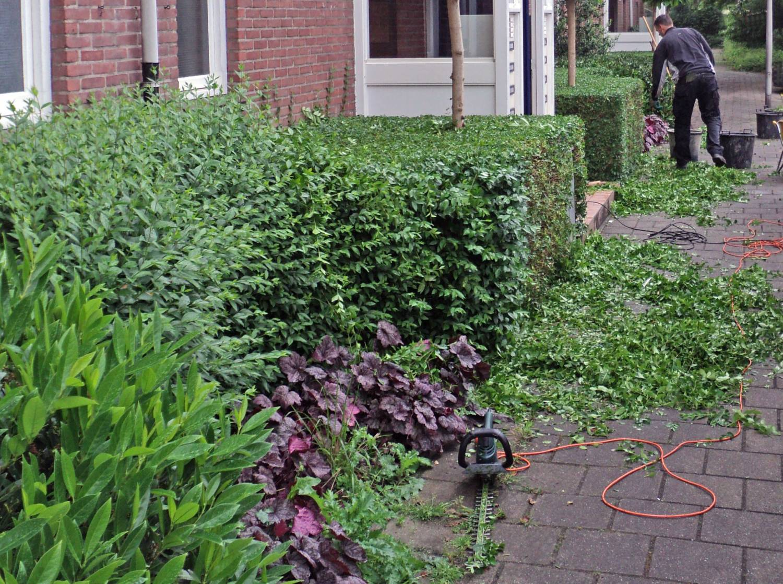 - Lekker bezig in de tuin