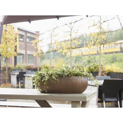 Lichtgewicht plantenbak Twist Planter brons