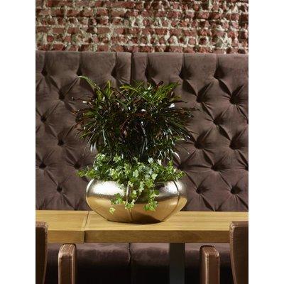 Plantenbak Moda Bowl 22 goud