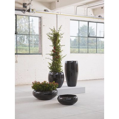 Plantenbak Moda Partner 74 zwart glans