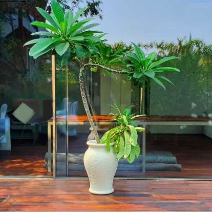 Vase Ming Black-3