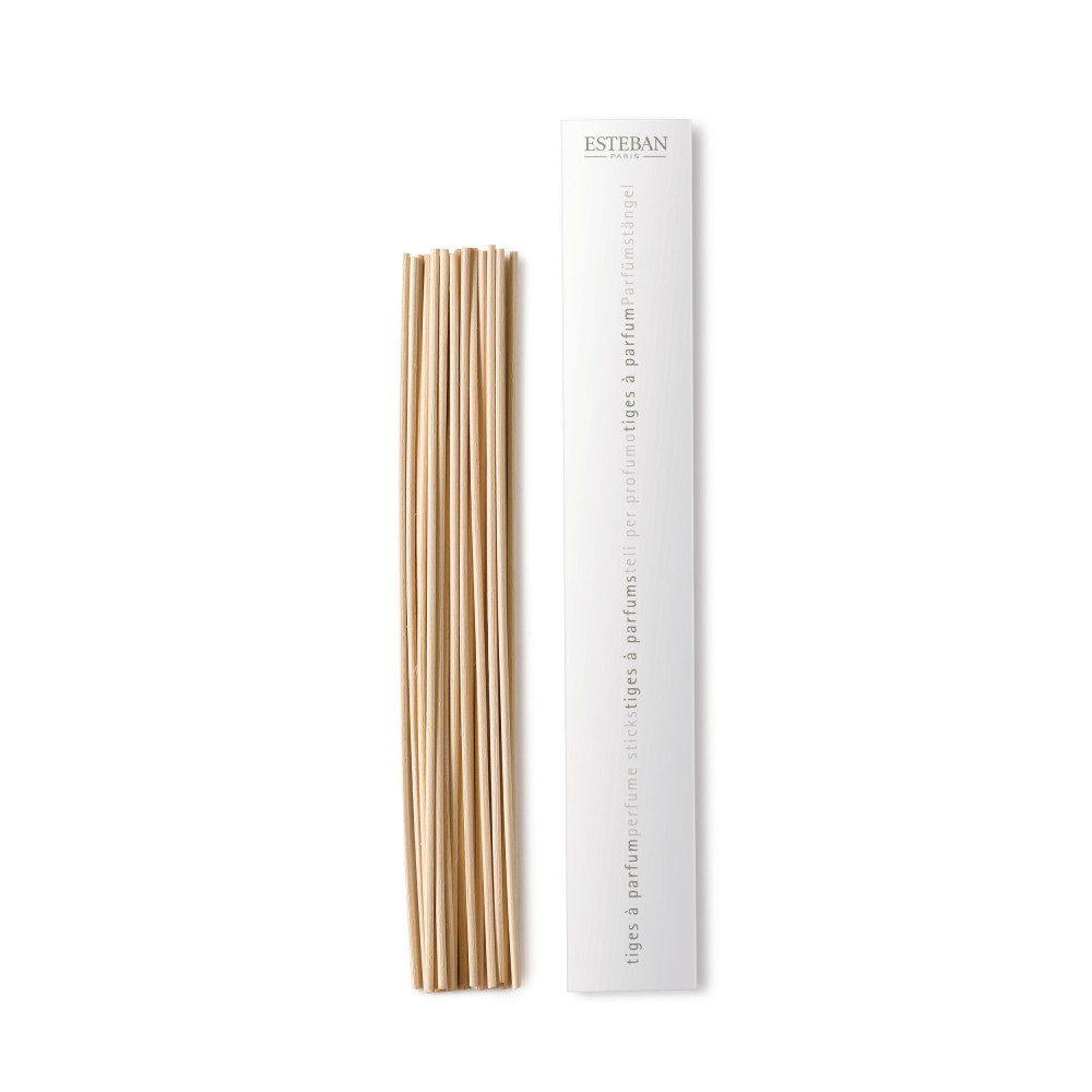 Natural Perfume Stems 25cm-1