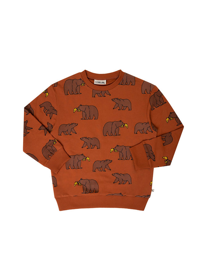 Grizzly - sweater