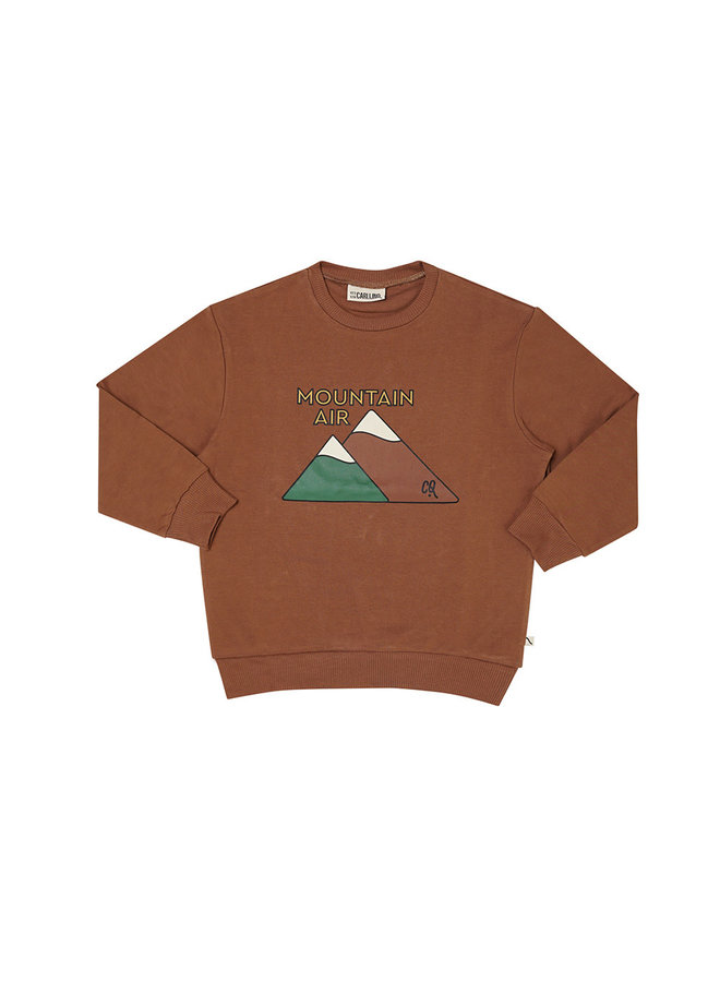 Mountain Air – sweater wt print brown
