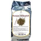 Russian Milkvetch
