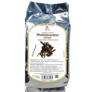 Phlojodicarpus Wurzel