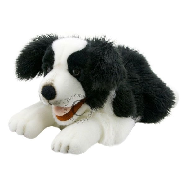 The Puppet Company Handpop Puppy Border Collie 50cm