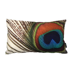 Peacock Feather / Pauw Long 2 | 30 x 50 cm | Kussenhoes | Katoen