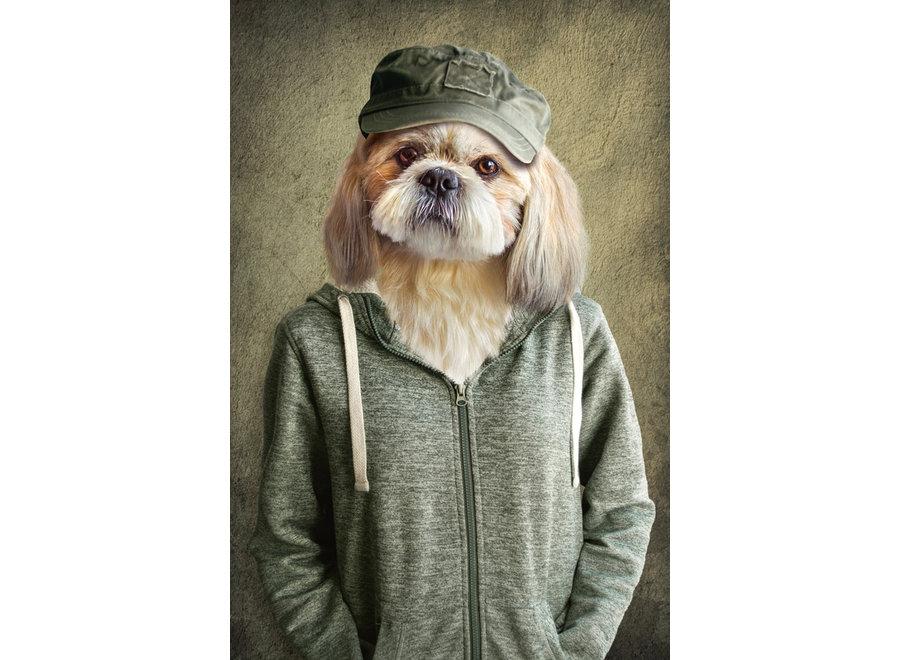 Lovely Dog in Jacket Digitalprint 80x120cm Acrylic Glass